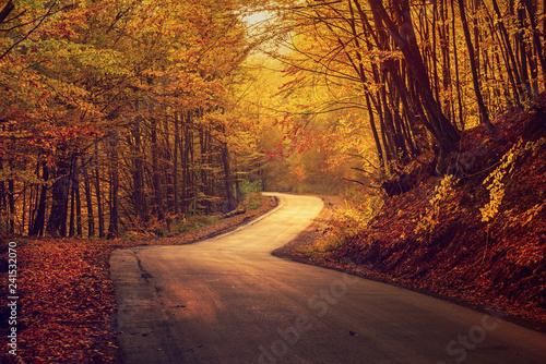 mata magnetyczna Beautiful autumn landscape