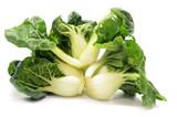 Milk cabbage bok choy - 241539471