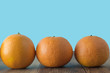 Creative Concept. Many Orange fruits citrus, on blue background, isolated. copy space. - 241570636