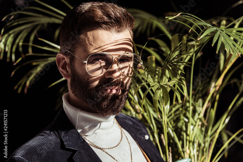 handsome bearded man in glasses shadows on face and plant isolated on black