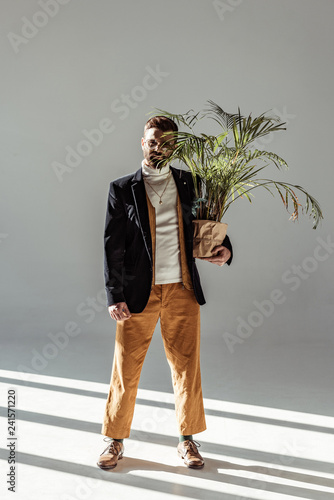 handsome bearded man in glasses holding green plant in pot and looking at camera on grey background