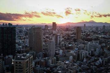 Tokyo Aerial © romanb321