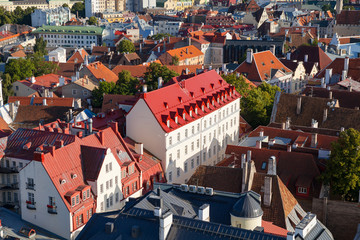 Red roofs of old town Tallinn, Estonia at sunny day