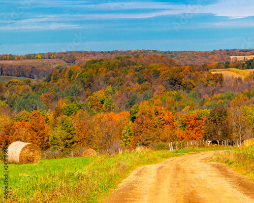 mata magnetyczna autumn rural landscape with dirt road, trees, and blue sky