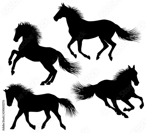 horse silhouette with detailed hair vector illustration design