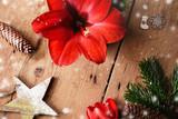 Blühende rote Amaryllis umgeben von weihnachtlicher Dekoration auf Holz - 241669680