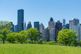 Park and skyline of Midtown Manhattan in New York City