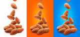 Falling almond nuts isolated on white background - 241699497