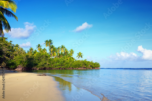 Green palm trees on caribbean beach. Travel background.