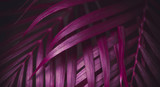 Deep dark purple colored palm leaves pattern. Creative layout, toned image filter effect - 241810481
