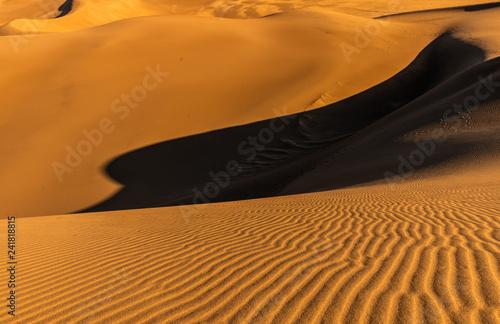 Sand Dunes Under a Warm Sun - 241818815