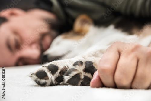 Hundepfoten und Hand, im Hintergrund Welpe und Mann beim Schlafen