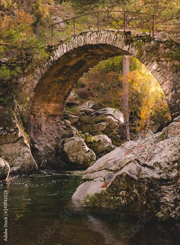 Pont ancien surplombant une rivière - 241843028