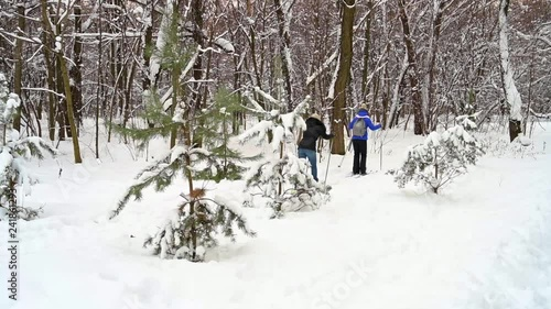 People Skiing In Winter Forest.
