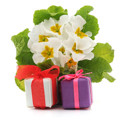 White flowers and gifts.