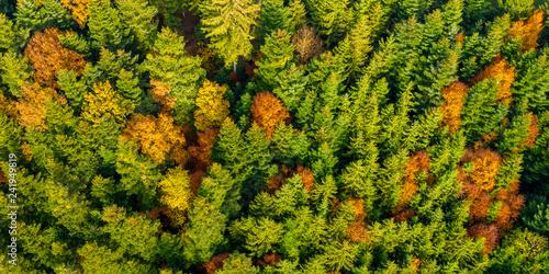 Luftaufnahme, Wald im Herbst, Schwäbischer Wald, Baden Württemberg, Deutschland