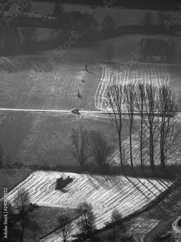 Patterns on the Valtellina fields in winter - 241959822