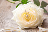 Silver necklace on a white rose flower.