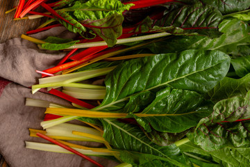 Harvest of organic swiss chard