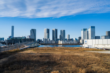 view of city © Shuntaro
