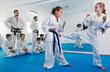 Leinwanddruck Bild - Pair of little girls practicing new karate moves during class