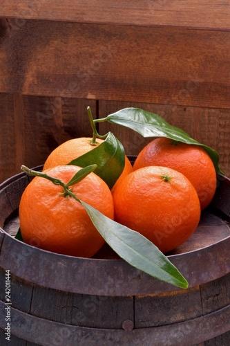 Mandarini - 242011444