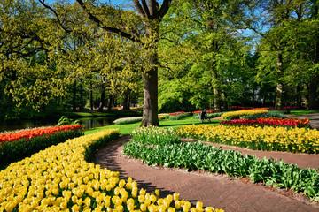 Blooming tulips flowerbeds in Keukenhof flower garden, Netherlan