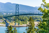 Lions Gate Bridge framed by trees on a clear day - 242025248