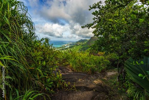 Hiking the copolia trail,granite rocks in the jungle on mahé, seychelles 7