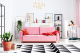 Plant on table and patterned carpet in front of pink sofa in white flat interior with posters. Real photo - 242094825