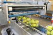 canvas print picture - modern packaging machine for fresh pears in a factory for food industry // Verpackungsmaschine für Obst/ Birnen in Folie für den Verkauf im Supermarkt