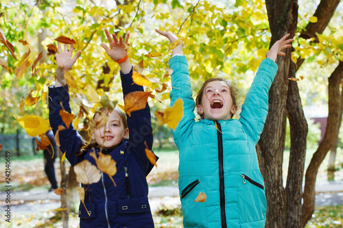 Young pretty girls teenagers in the autumn courtyard walk throw yellow leaves and rejoice.