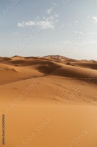 sand dune in desert - 242161636