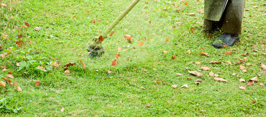 the human use the lawn mower in  the garden © sema_srinouljan