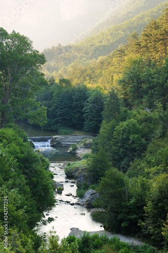 A river surronded by trees in Occitanie, France © cpainvin