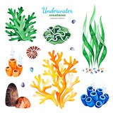 Underwater creatures. Watercolor collection with multicolored coral reefs,seashells and seaweeds.Perfect for invitations,party decorations,printable,craft project,greeting cards,blogs,stickers etc