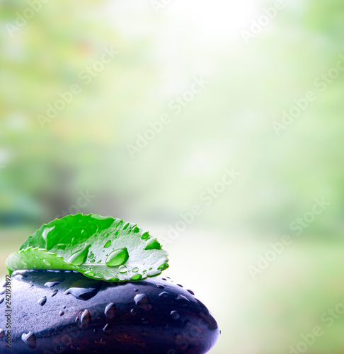 stone with leaf, spa concept