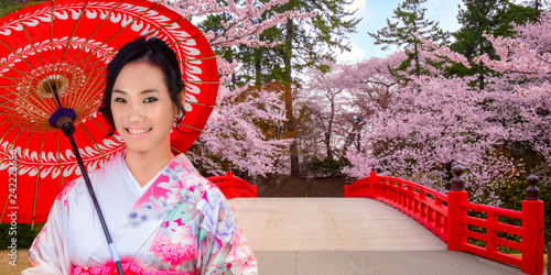 Japanese woman in Kimobno dress with Full bloom Sakura - Cherry Blossom  at Hirosaki park in Japan