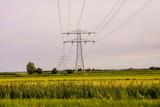 European natural countryside - 242224421