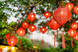 Tree decorated with red lanterns. Focus on the first lantern - 242255252