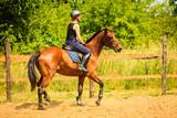Jockey girl doing horse riding on countryside meadow - 242260058