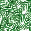 Leinwandbild Motiv Beautiful exotic, tropical watercolor seamless pattern with palm tree leaves
