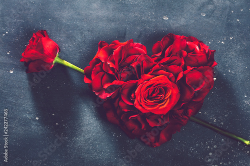 Heart-shaped roses and rose flower.