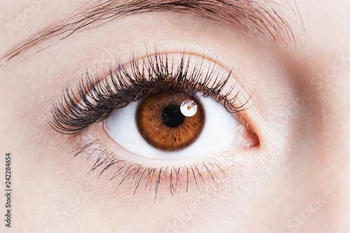 eye - 242284654