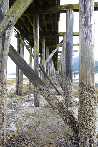 Acrylglas Pier Wooden Jetty Stretching Into Lake With Forest Covered Mountains Behind In Alaska