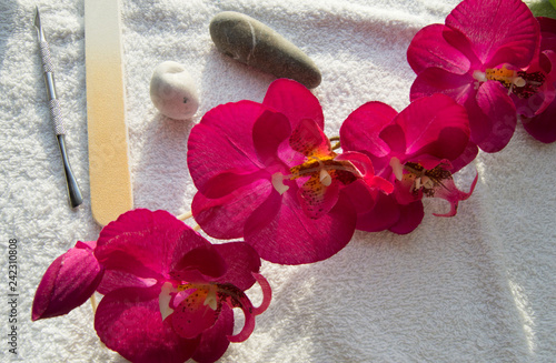 Accessories and tools for Spa manicure, Orchid and stones on white background