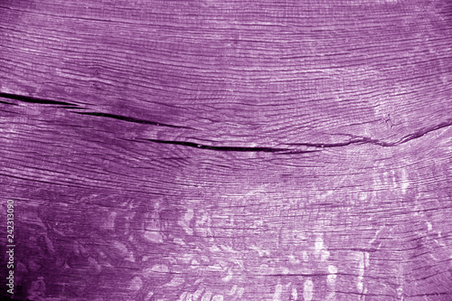 Old log cut macro in purple color.
