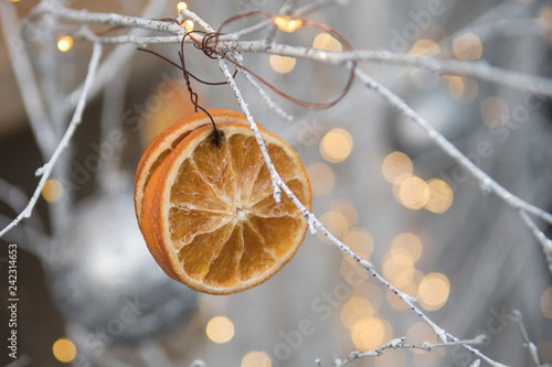 Chistmas window display of orange slices - 242314653
