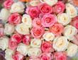 Big bouquet of roses.