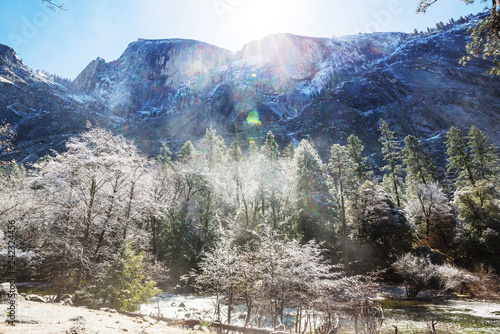 Early spring in Yosemite - 242324456